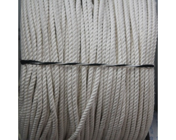 Sash Cord M8 White LM 1000mm