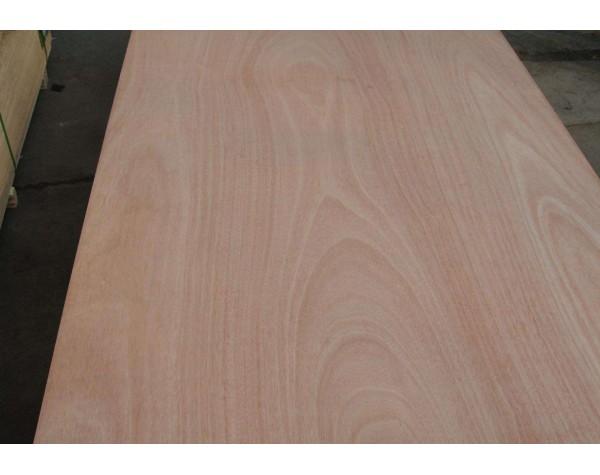Hardwood Ply Neatline® Poplar Core B/C 4/6/9/12/15/18/25/30MM 2400X1200.